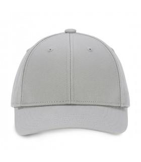 Colorz Grey trucker cap
