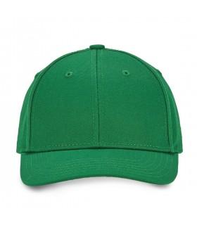 Colorz Green trucker cap