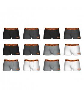 Lot de 12 Boxers coton homme KTM