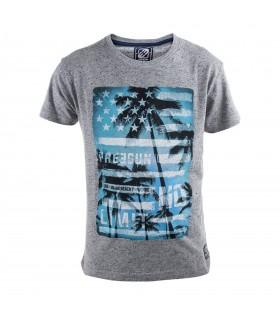 Tee Shirt Garçon Imprimé Bleu Freegun.