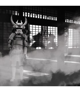 Men's Stormtrooper Samourai Boxer