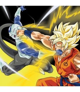Boxer garçon Dragon Ball Super Goku VS Freezer