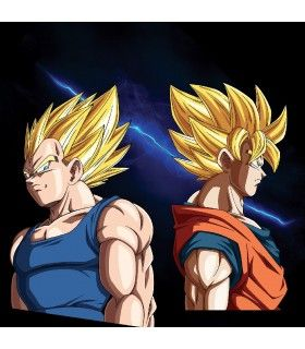 Boxer homme Dragon Ball Z Duel Vegeta Vs Goku