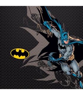 Boxer Freegun garçon Aktiv DC Comics Batman Mesh 2 cote