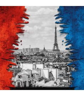 Men's French Nation microfiber Boxer