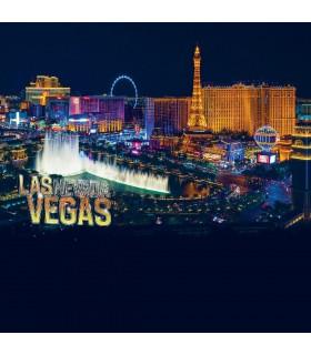 Pack of 4 men's Las Vegas Boxers