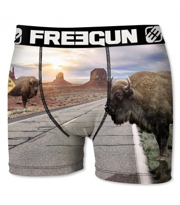 Pack of 4 boy's Animals Boxers E3